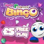 mFortune Bingo- amazing bingo sites